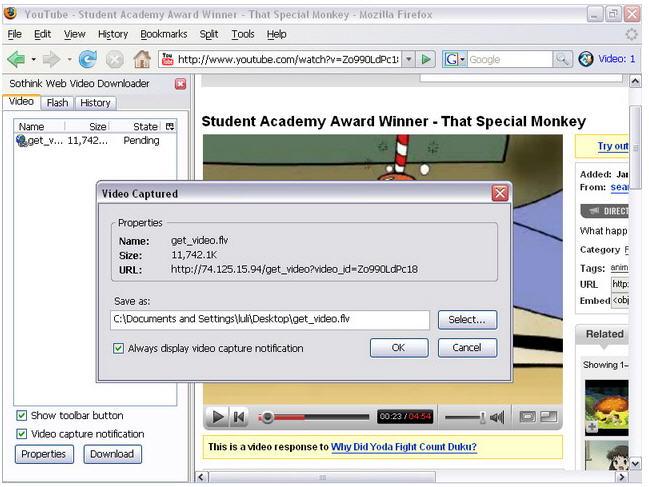 Sothink Web Video Downloader for Firefox - Capture, download video