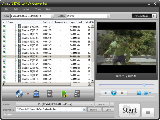 Ainsoft DVD to FLV Converter