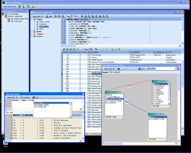 Screenshot of Black Cat - SQLite3 database manager 8.17.