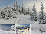 Animated Winterscapes