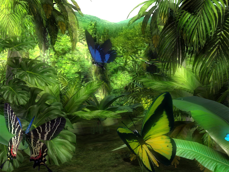 On the screen of your monitor with our 3d forest butterflies scree