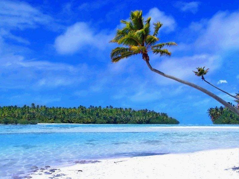 Tropical Beach Living Desktop Full Size Screenshot ...