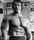 Arnold Schwarzenegger screensaver This free screensaver contains many