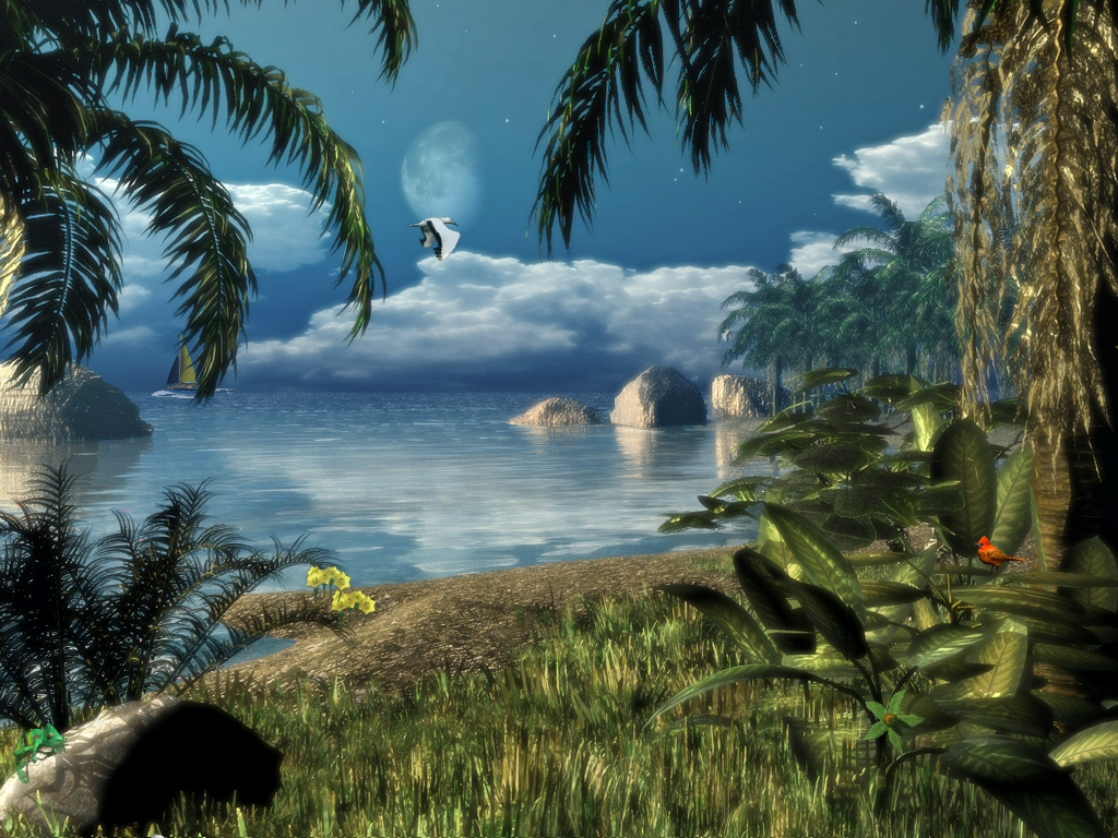 Caribbean Nights Screensaver 1 0 Screenshots