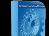 XLS Processor Engine for Oracle BI Publisher