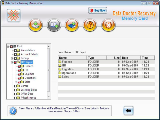 Memory Stick File Salvage Software