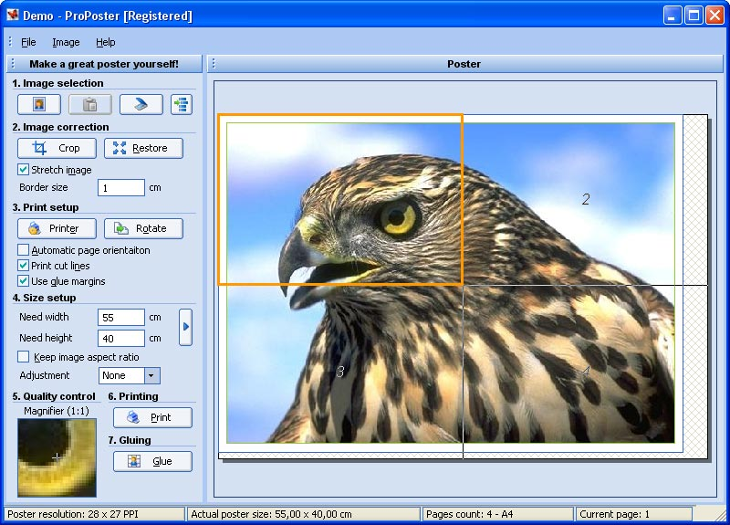 ProPoster 3.01.12 Free Download