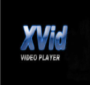 codec for xvid:
